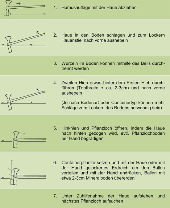Anleitung_Wiedehopf